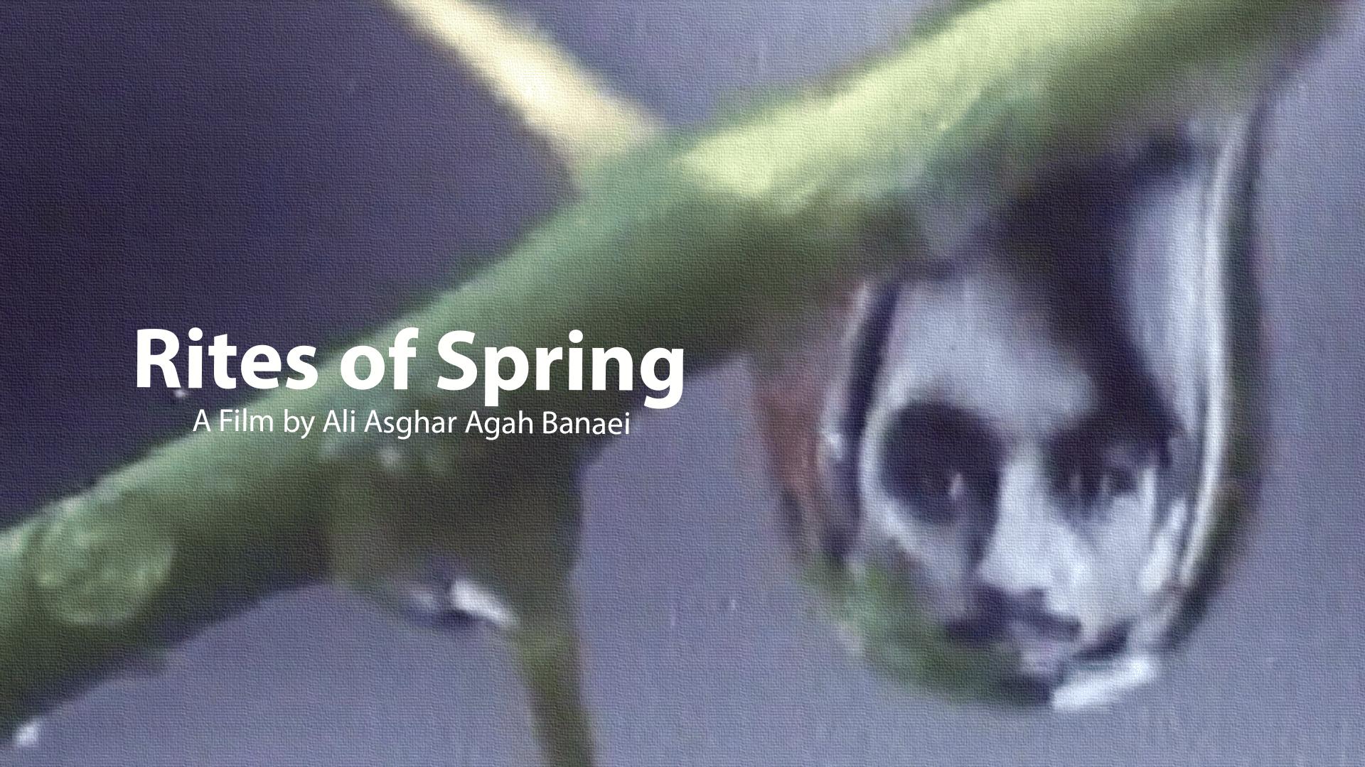 Rites of Spring (1982)